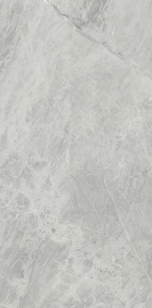 Marble Grain Continuity Gris De Savoie