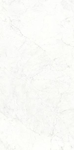 Непрерывность мраморного зерна MICHELANGELO ALTISSIMO